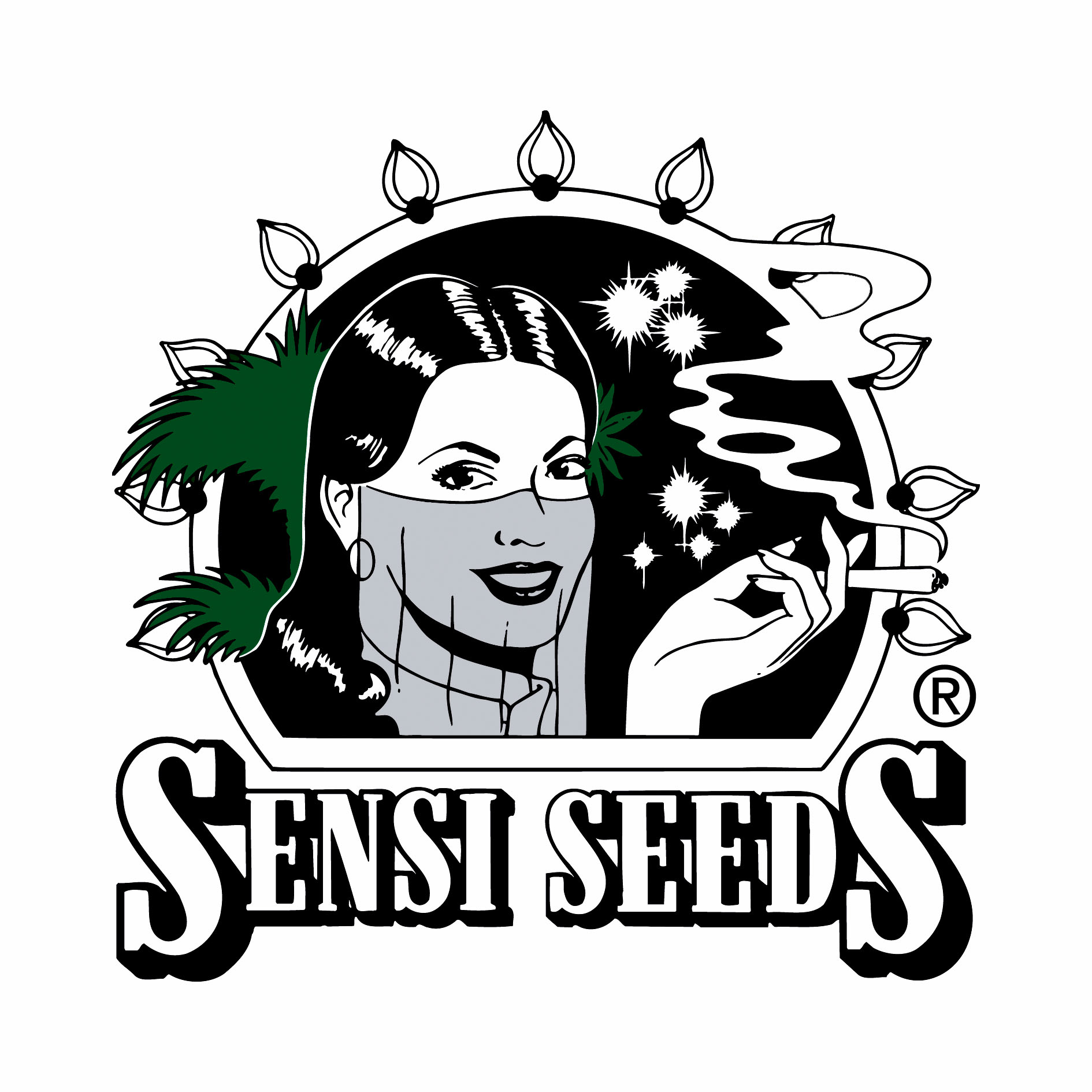 Dinafem Seeds